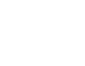 Logo-ALG-Regroupement-blanc 300px